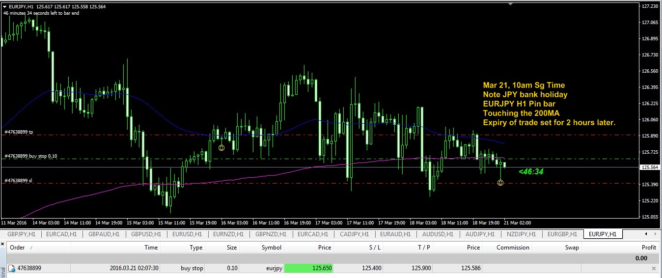Forex signal factory